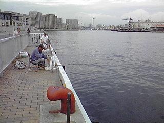 携帯photo-2 066.JPG