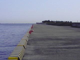 携帯photo 605.JPG